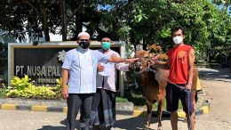 Welcoming Eid alAdha 1442 H PT Nusa Palapa Gemilang Tbk Hands Sacrificial Animals to the Community